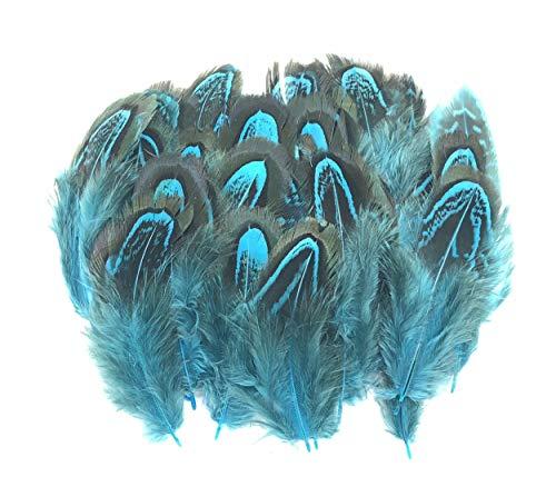 ERGEOB Natur Dekoration Hahnfeder fasan Feder 50 stück, 4-7cm läng, Ideal für Kostüme, Hüte, basteln, Zuhause Dekor, DIY blau
