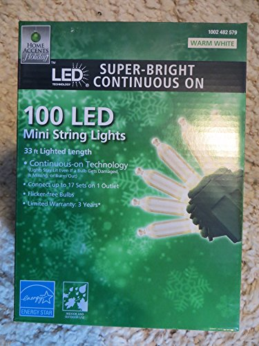 Home Accents 100 LED Super Bright Continuous ON WARM WHITE Mini Lights