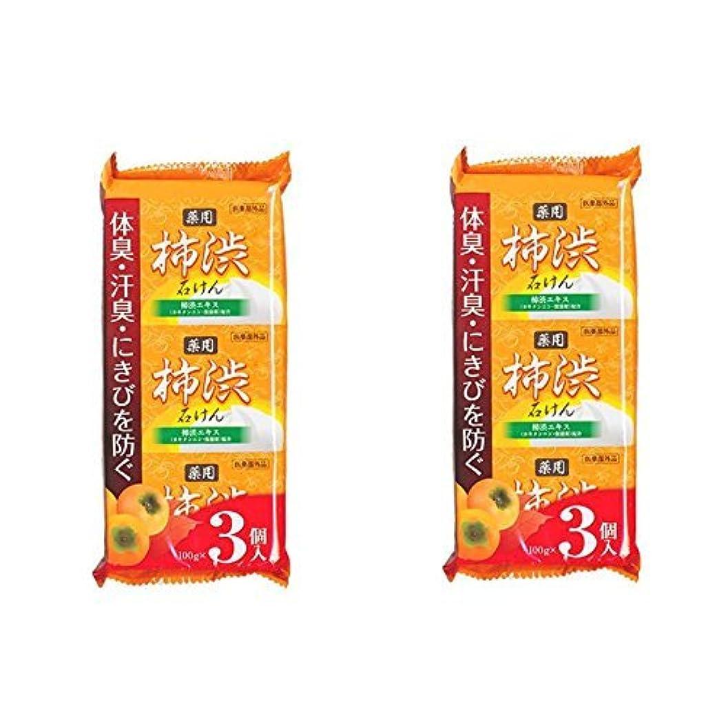 鮮やかな貝殻割り込み柿渋石鹸 100g×6個セット(3個入り×2袋) 柿渋エキス カキタンニン?保湿剤配合