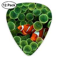 水中の魚の世界エレキギターのための絶妙な12個のピック、エレキギターとアコースティックギターに適しています