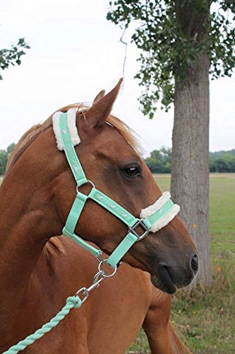 Cwell Equine NEW Horse print fur padded headcollars halter + matching lead...