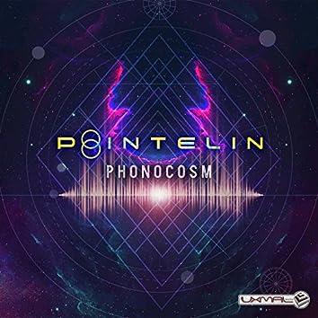 Phonocosm