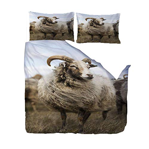PANDAWDD Bedding Duvet Cover Set - 135x200cm Prairie animal sheep Brushed Microfibre Duvet Cover with 2 Pillowcases Easy Care Anti - Allergic Soft Smooth