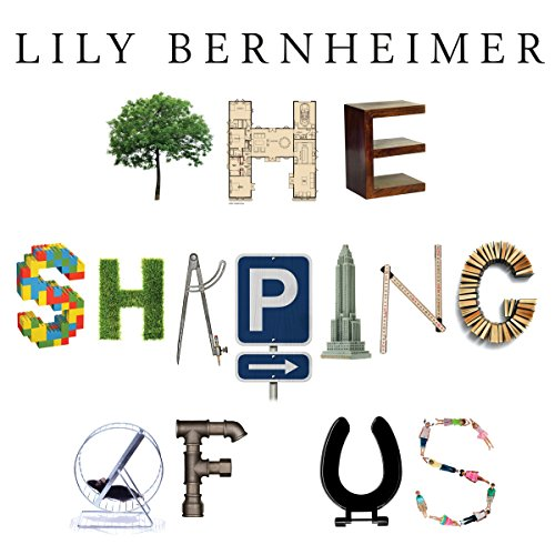 The Shaping of Us cover art