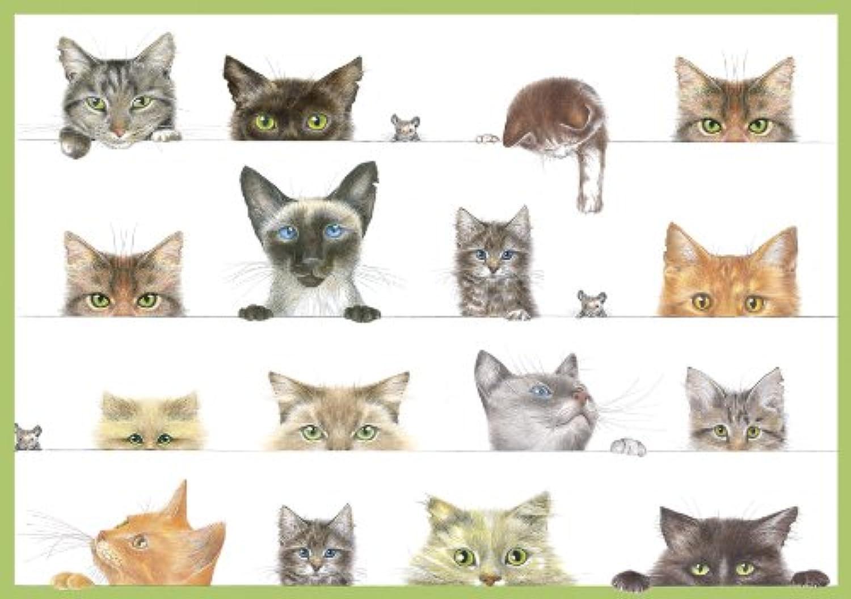 Caspari Katzen BLANKO BLANKO BLANKO Aufstellkarten, sortiert, Karton von 8 B00H2HB4RM | Online einkaufen  e14462