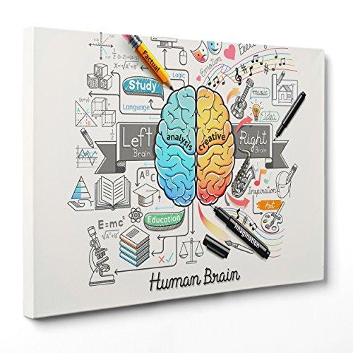 Cuadro sobre lienzo con bastidor listo para colgar - Cervello Idea Concept - Psicología - Brainstorm Business - 50 x 70 cm - Sin marco - Código 2853)