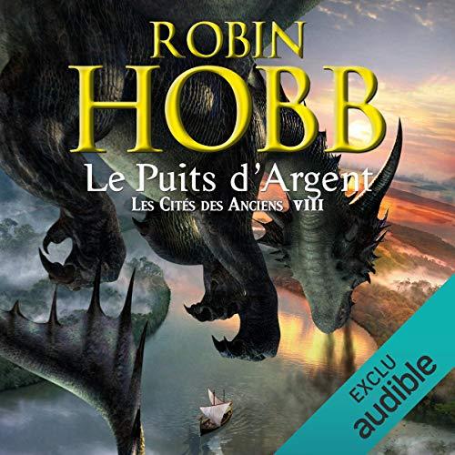 Le puits d'argent audiobook cover art