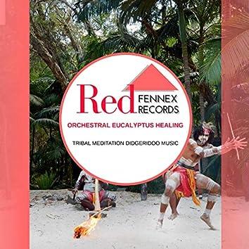 Orchestral Eucalyptus Healing - Tribal Meditation Didgeridoo Music