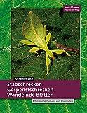 Stabschrecken, Gespenstschrecken, Wandelnde Blätter: Erfolgreiche...