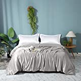 ZIMASILK 100% Mulberry Silk Duvet Cover,Both Sides 19 Momme Nature Silk Bedding Cover with Zipper Closure,Comfy &Soft,1 pc Silk Duvet Cover Only(Dark Grey, Queen:88'x92')