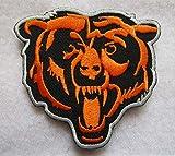 Chicag-o Bear 3D...image