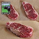 モーガン牧場ビーフ 高品質 牛肉 サーロインステーキ セット 最高級グレード アンガス牛 ホルモン剤と抗生物質不使用