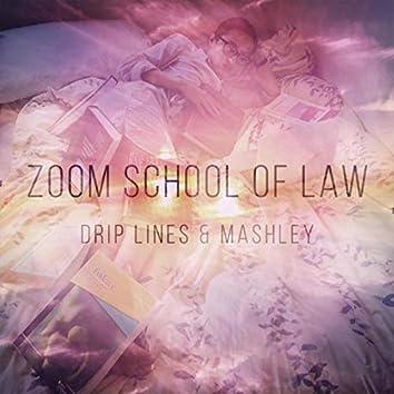 Zoom School of Law