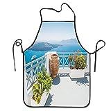 alice-shop Delantales, Isla de Santorini, Grecia, mar Egeo, árboles, Flores, Cielo despejado, Foto, impresión