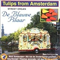 Tulips from Amsterdam