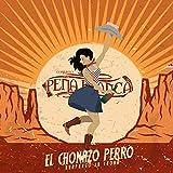 El Chonazo Perro Huapango la Chona