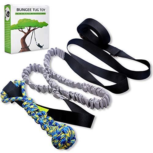 LOOBANI Dog Outdoor Bungee Hanging Toy,Interactive Tether Tug Toy for Pitbull & Small to Large Dogs to Exercise & Solo Play,Durable Tugger for Tug of War,with Chew Rope Toy … (Black)