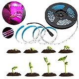 Tira de luz LED de 5 m para crecimiento de plantas, 5050 SMD, resistente al agua, se utiliza para flores de jardín, plantas de acuario, lámpara para plantas, lámpara para plantas, lámpara UV
