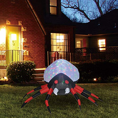Kaleidoscope Spider