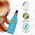 Beauty Shopping Freeze It 12-in-1 Amazing Leave In Treatment Spray, 10.2 Ounce