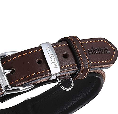 MICHUR Minimo Hundehalsband Leder, Lederhalsband Hund, Halsband, Braun, Leder, in verschiedenen Größen erhältlich