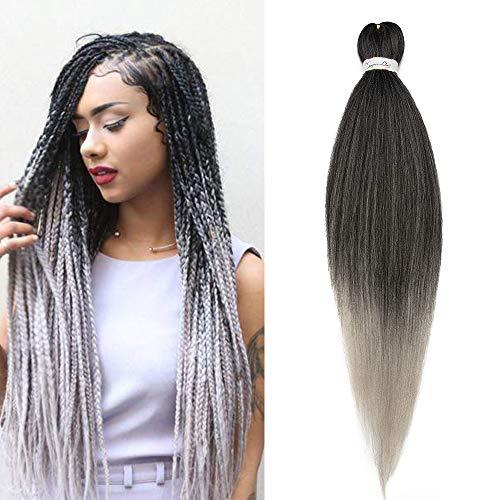 SEGO Box Braids Extension Cheveux Fibre Synthetique Kanekalon Rajout Meche Tress Extension Crochet Braids - [ 1 Ton 100g ] 26 Pouces (66cm) Noir Naturel+Silver