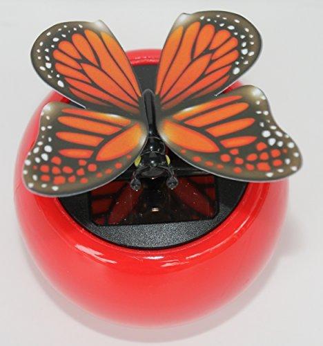 Solar Dancing Butterfly