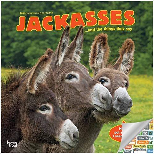 Jackasses Calendar 2020 Set - Deluxe 2020 Jackasses Wall Calendar with Over 100 Calendar Stickers (Funny Gifts, Office Supplies)