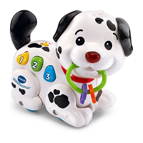 VTech Roll & Discover Puppy