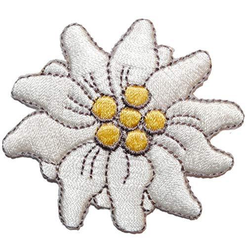alles-meine.de GmbH Bügelbild - Blume Edelweiß - 6,2 cm * 5,5 cm - Aufnäher Applikation Blumen Bayern Tracht Edelweiss Alpen Trachten / Blüte