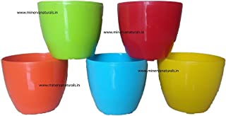Minerva Naturals GARDENS NEED Cool Pot (Pack of 5, Multicolour)