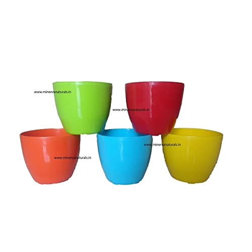 Minerva Naturals GARDENS NEED Cool Pot (13cm, Pack of 5, Multicolour)