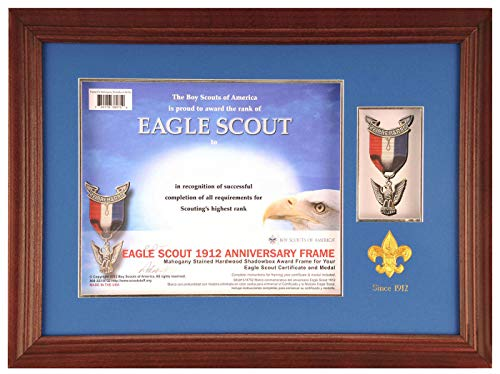 eagle scout display - 3