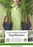 Le guide Marabout des plantes dépolluantes : Agir pour purifier l'air dans la maison de Pinson. Claire (2009) Relié