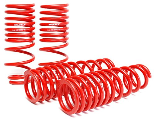 Skunk2 519-05-1480 Lowering Spring for Honda Civic/del Sol