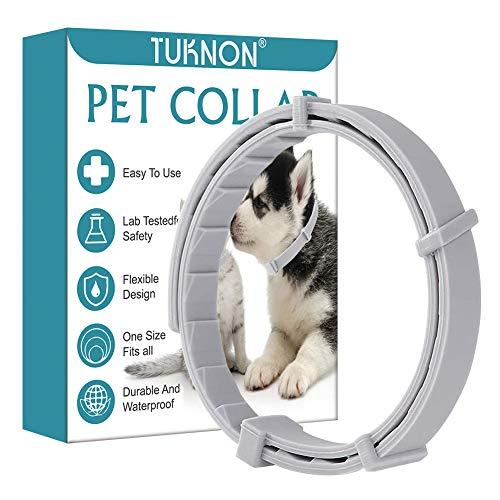 Collare Antipulci Cane, Collare Antipulci Gatto, Collare Antipulci e Zecche per Cani, Collare Antipulci per Cane e Gatto, Prevenzione Pulci e Zecche,