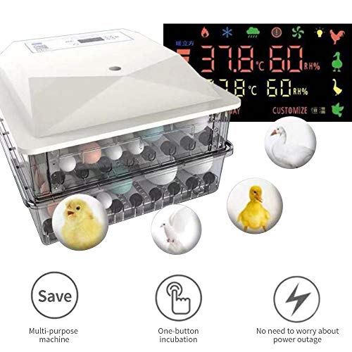 Fayelong 56 Eier Vollautomatischer Inkubator Brutapparat Digitale Eier Geflügel Brutmaschine Brutkasten Flächenbrüter mit Automatischer Temperatur- und Luftfeuchtigkeitskontrolle Automatisches Drehen
