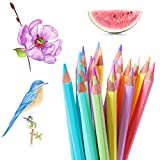 Marco 24 Count Colored Pencils Art Pencils Drawing Pencils Professional Arts and Crafts Set Vivid Colors Pastel Pencils Markers for Shading Sketching Coloring Projects Artists Beginners Adult Kids