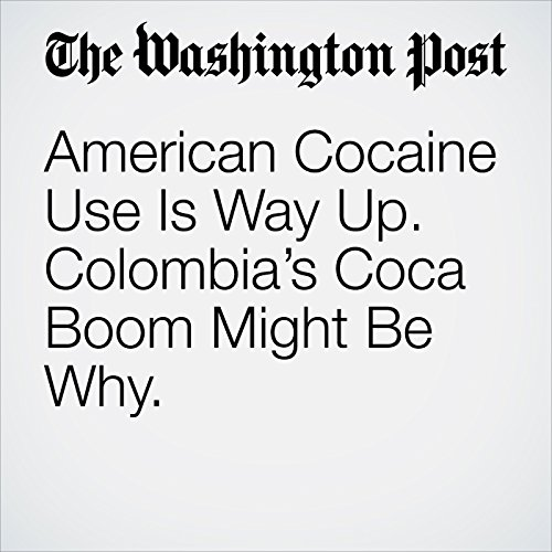 American Cocaine Use Is Way Up. Colombia's Coca Boom Might Be Why. copertina