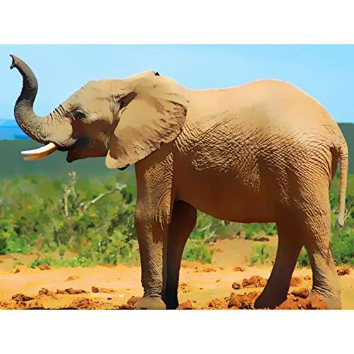 Lazodaer - Kit de pintura de diamante para adultos, niños, decoración de habitación y oficina, regalos para ella, elefante, descubrimiento de oasis de 39,8 x 30 cm