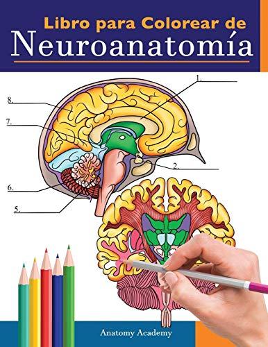 Libro para colorear de neuroanatomía: Libro para colorear detalladísimo de cerebro humano...
