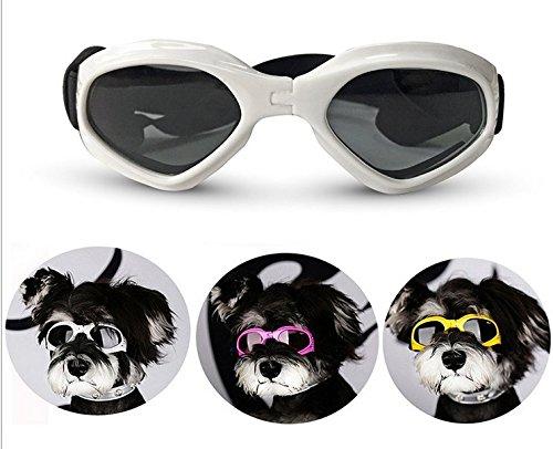 Pet Dog Lunettes UV Lunettes de soleil Eye protection contre l'usure Mode