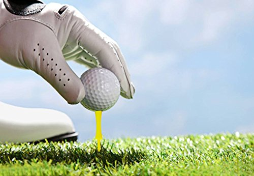 Xunlong Castle Golf Tees Step Down Plastic Golf Tees 50 Pack 4 Sizes 1 3/5 2 1/10 2 3/5 3 Inch Bulk 50 Count (41 54 68 78 mm)