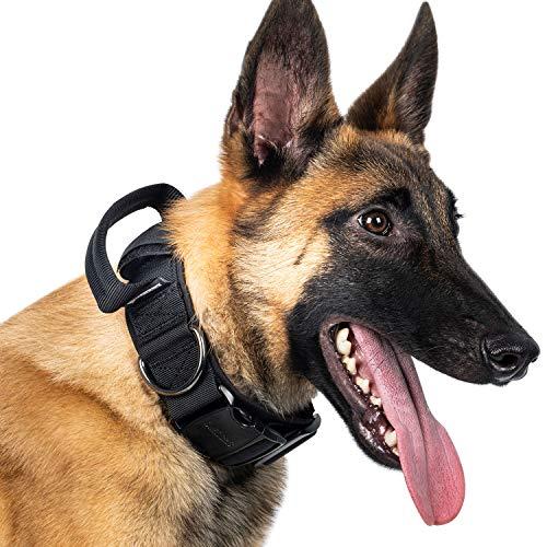 OneTigris K9 Collar con hebilla de metal para perros | Paquete múltiple (L)