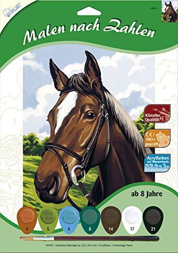 MAMMUT 105011 - Malen nach Zahlen Tiermotiv, Porträt Pferd, Komplettset mit bedruckter Malvorlage im A4 Format, 7 Acrylfarben und Pinsel, Malset für Kinder ab 8 Jahre