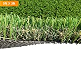 PZG Commerical Artificial Grass Patch w/ Drainage Holes & Rubber Backing | Extra-Heavy & Durable Turf | Lead-Free Fake Grass for Dogs or Outdoor Decor | Total Wt. - 103 oz & Face Wt. 75 oz | 5' x 3'