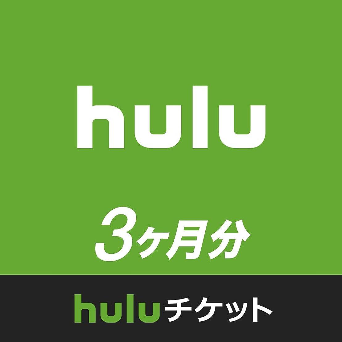 歌詞石膏一見Huluチケット (3ヵ月利用権)|オンラインコード版