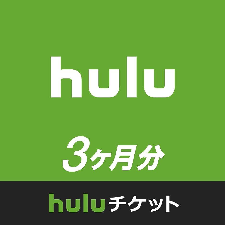 湿原織機裂け目Huluチケット (3ヵ月利用権)|オンラインコード版