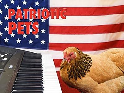 Clip: Patriotic Pets