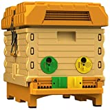 Apimaye Insulated 7 Frame Langstroth Nucleus Bee Hive Nuc